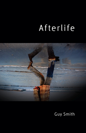 Book cover - Afterlife, by Guy Smith